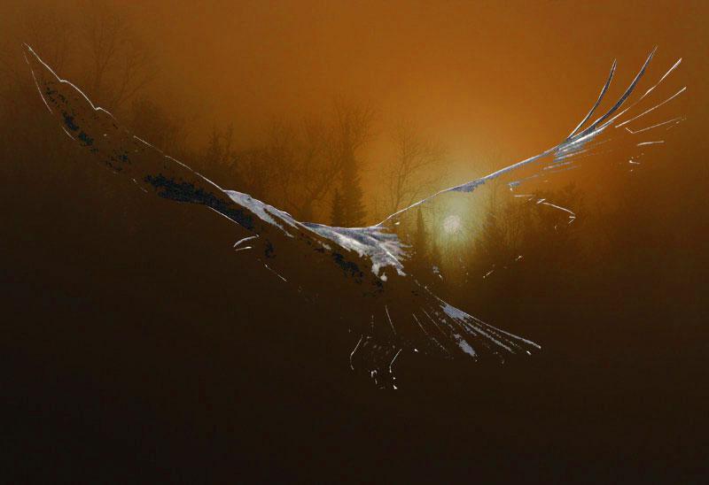 Seelenvogel